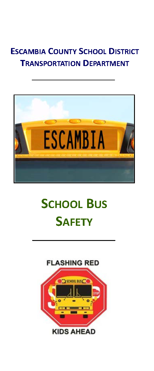 School Bus Safety Cover